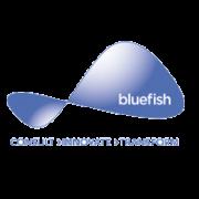 Bluefish Communications